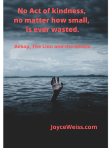 favorite quote | Joyce Weiss
