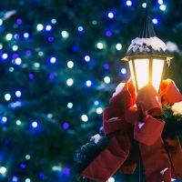 Joyce Weiss | seasons greetings